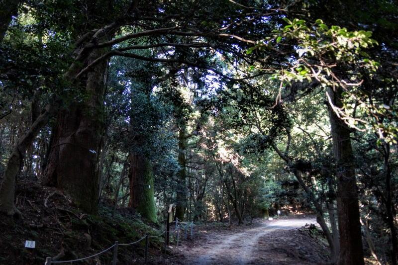 郷土自然保護地域ー熊山奥吉原ー