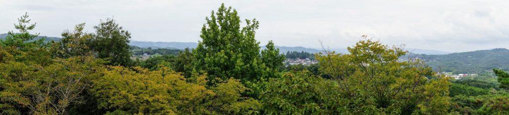 円城方面ーいわくら公園展望台よりー