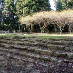 階段跡ー帝釈山霊山寺ー