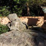 児島高徳挙兵跡ー熊山神社ー