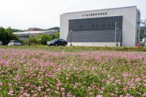 本社と研究所ー山田養蜂場ー