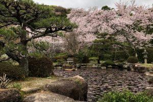 庭園ー仏心寺ー