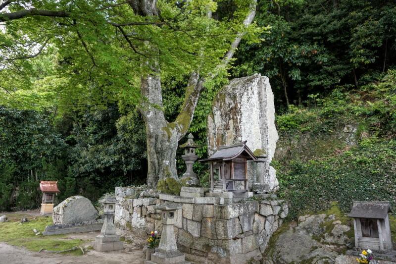 大木の下の立石