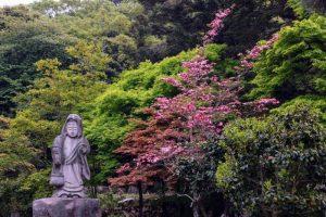本堂前庭園ー国富山少林寺ー