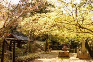 境内ー松琴寺ー