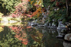 曹源寺庭園