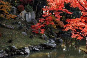 枯山水の石組ー曹源寺庭園ー
