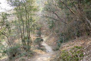 小鳥の森(初春)ー三徳園ー