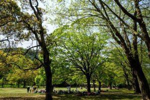 芝生広場ー三徳園ー