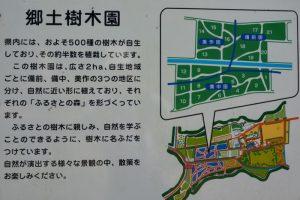 郷土樹木園案内図