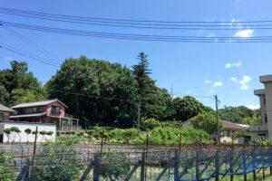 亀山城西の丸跡