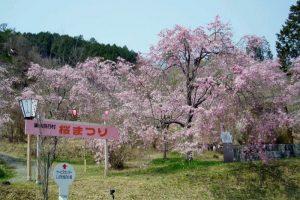 藤右衛門桜小径入口ーたけべの森公園ー