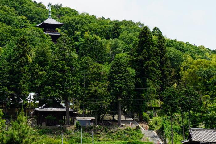 銘金山金山寺