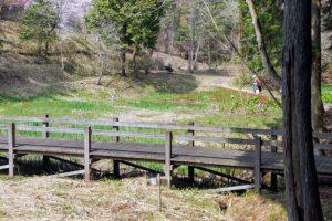 湿生植物園ーたけべの森公園ー