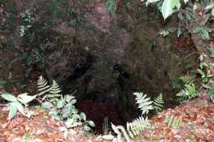 天守の井戸跡ー玉松城跡ー