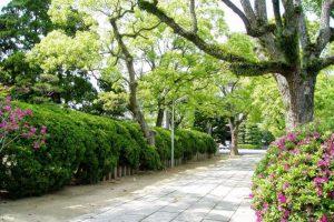 宗忠神社の庭