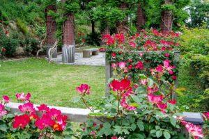 バラとバーゴラー岡山市半田山植物園ー