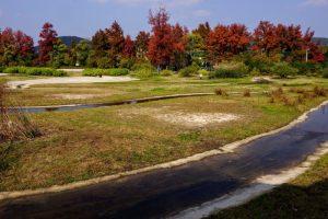 復元水路跡ー津島遺跡ー