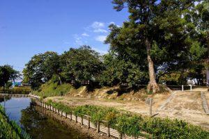 撫川城跡南側濠