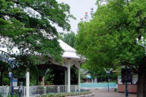 ロイヤルティーカップー倉敷チボリ公園ー