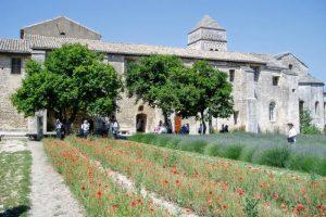 修道院の裏庭ーサン・ポール・ド・モゾール修道院ー