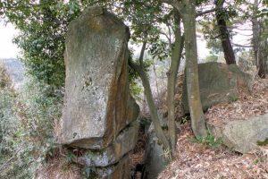 富山城跡本丸付近の岩