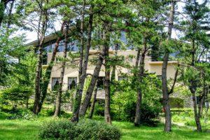 大山レークホテル夏