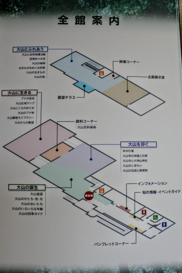 大山自然歴史館案内図