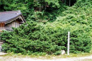 ダイセンキャラボクー大神山神社奥宮ー