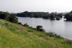 一の荒手上流部の旭川
