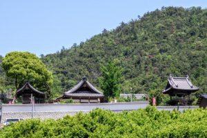 海蔵寺遠景