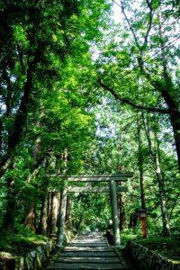 奥宮参道ー大神山神社ー