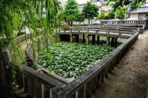 旧岡山藩藩学泮池