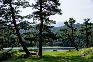 夏の大野池ー大山レークホテルー