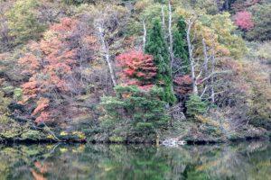 秋の大野池ー大山レークホテルー