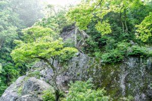 僧兵荒業の岩
