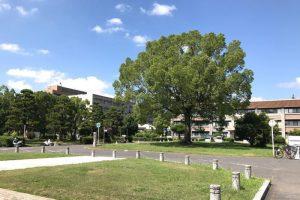 岡大津島キャンパス