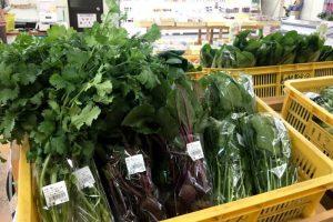 野菜売り場ーサンサンくめなんー