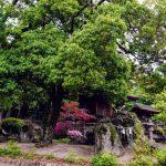 阿智神社の磐座