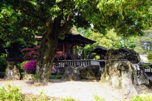 鶴亀の石組ー阿智神社ー