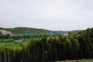 柳井原貯水池方面ー南山城跡よりー