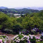 種松山公園
