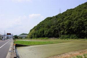 藤田伝八郎の墓周辺