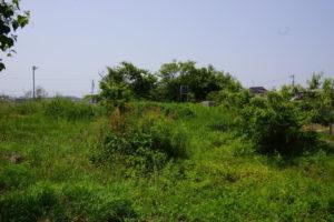 加茂城二の丸跡-2