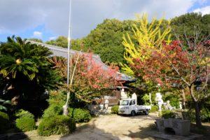 円福寺 境内