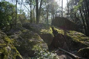八畳岩周辺の磐座