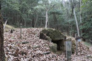 石舟古墳(西側より)