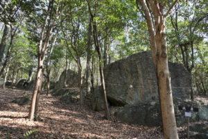 並んだ表面が平らな岩