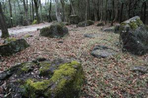環状石籬-2