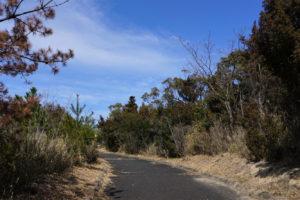 高辺山散策路